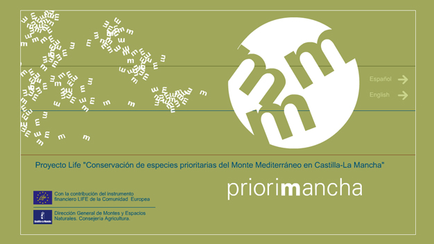Sitio web priorimancha