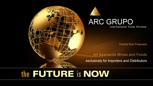 video ARC Group